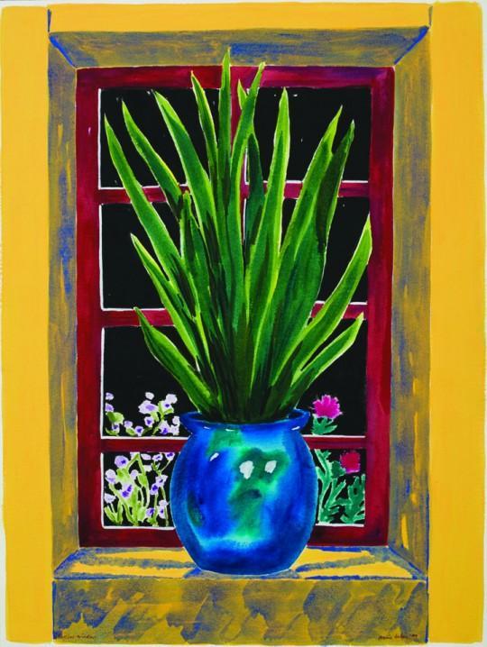 Il Vicino Window