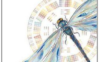 dragonfly awakening