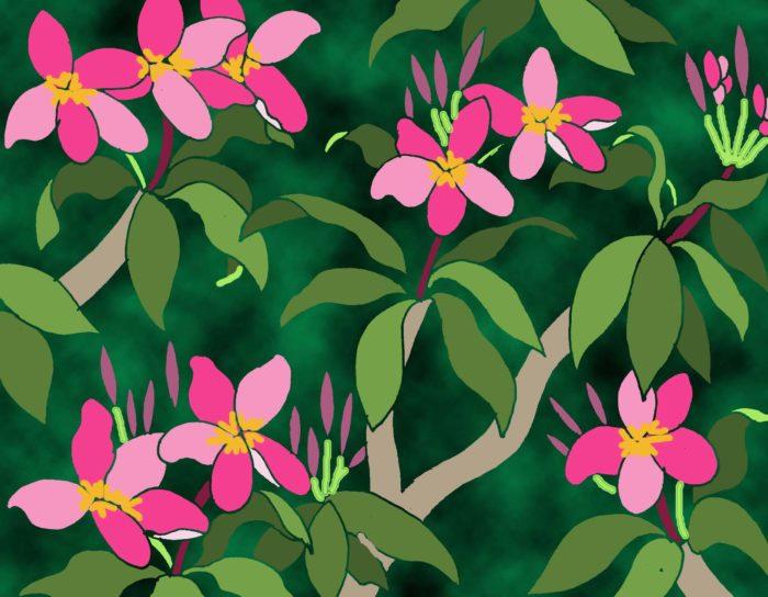 Pink Frangipani/green