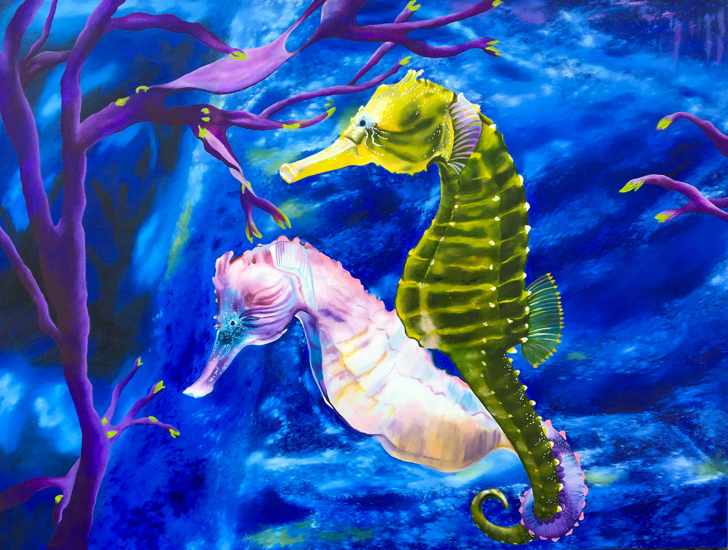 Seahorse mates