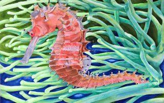 pink seahorse